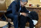 president-barack-obama-et-bo-le-chien-de-la-maison-blanche