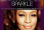 sparkle-hommage-a-withney-houston
